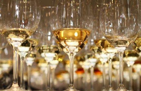 אויר הרים צלול ויין – הרבה יין